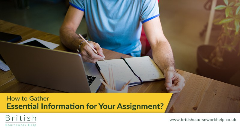 How to Gather Essential Information for Your Assignment?